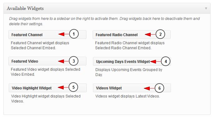 live streaming software wordpress widgets