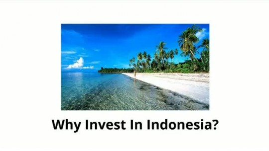 Investing in Indonesia.