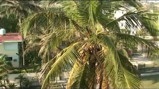 Las Playas del Este en CUBA